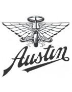 LED lampen en verlichting Austin