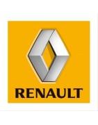 LED lampen en verlichting Renault