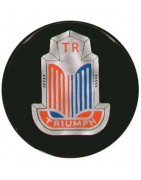 LED lampen en verlichting Triumph TR3